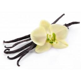 VANILIE (vanille)